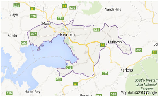 Plant Species Diversity along Road Reserve in Kisumu County Kenya