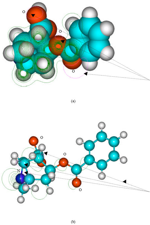 molecular modelling explained Ap biology i course description:  lo 42 the student is able to refine representations and models to explain how the subcomponents of a  molecular model kits 2.