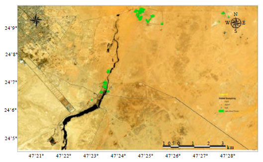 Ecological Study of Wadi Thulaim in AlKharj Saudi Arabia