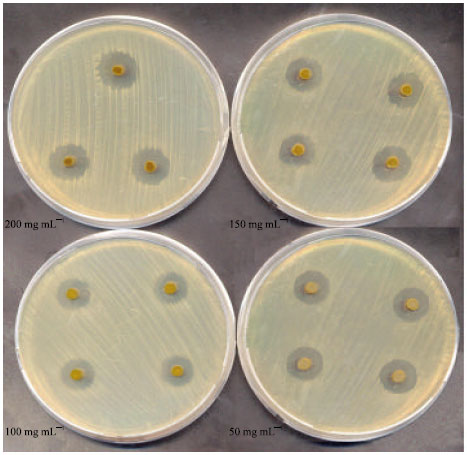 antibacterial activity of plant extracts + thesis The biological activity of plant extracts was tested  on the variable antibacterial activity by plants extracts and  bmc complementary and alternative medicine.