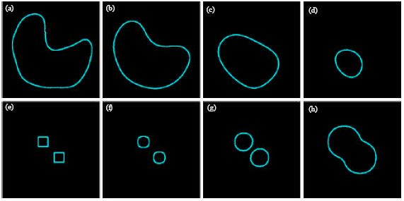 Image Segmentation with Partial Differential Equations