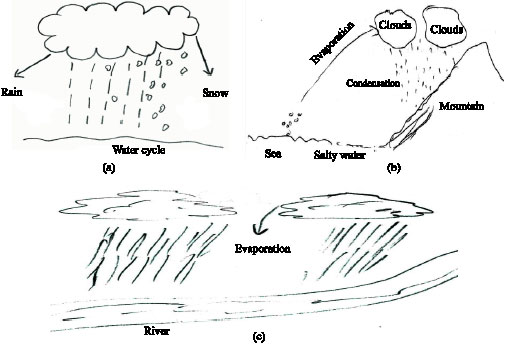 science students u2019 misconceptions of the water cycle