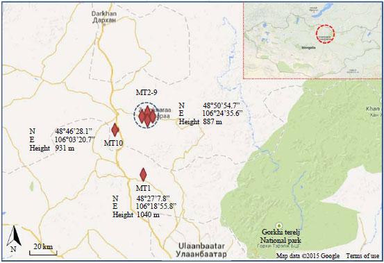 Horiba B 173 Conductivity Meter : Assessment of heavy metals in mining tailing around boroo
