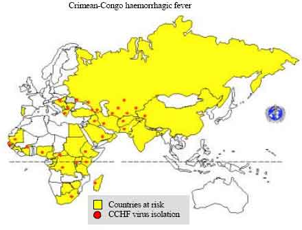 """overview of crimean congo hemorrhagic fever essay Strengthening national public health preparedness  framed by an introductory essay and an overview  a case study titled """"crimean-congo hemorrhagic fever."""