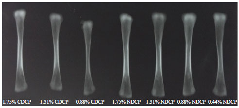 Image for - Carcass Characteristics and Bone Measurements of Broilers Fed Nano Dicalcium Phosphate Containing Diets