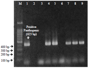 Image for - Occurrence of Leptospira Species from Rodents, Soil and Water from an Oil Palm Plantation in Northern Sarawak