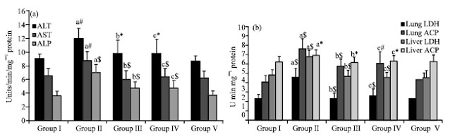 Image for - Inhibitory Effect of Sulforaphane against Benzo(a)pyrene Induced Lung Cancer by Modulation of Biochemical Signatures in Female Swiss Albino Mice