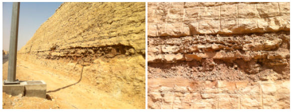 Image for - Mineralogical Composition of Limestone Rock and Soil from Jubaila Formation