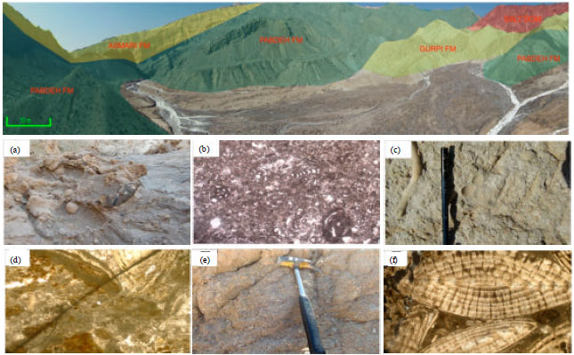 Image for - Depositional Evolution and Sediment Facies Pattern of the Tertiary Basin in Southern Zagros, South Iran