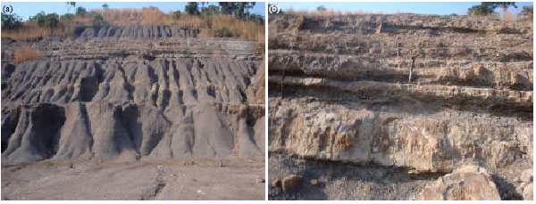 Image for - Ichnology of the Enugu Formation: Implications for Campanian Sea Movements    in Southeastern Nigeria
