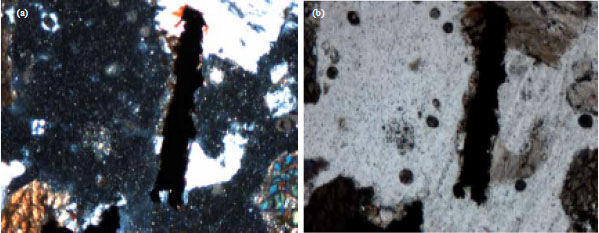 Image for - Mineralogy and the Texture of the Basalt In, Ha