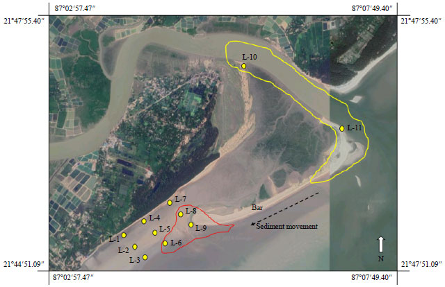 Image for - Quantitative Analysis and Characterization of Grain Size Distribution-Study from Recent Coastal Sediments of Chandipur, East Coast India