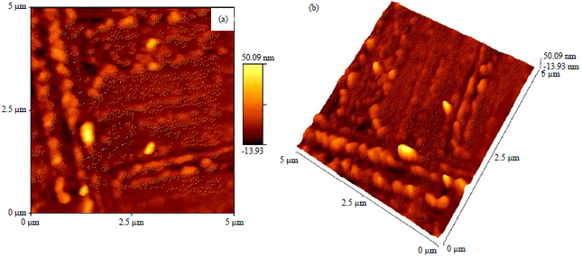 Image for - Synthesis and Characterization of Sn/ZnO Nanoparticles for Removal of Organic Dye and Heavy Metal