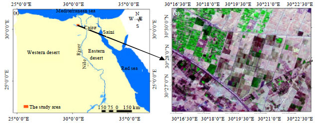 Image for - Sustainable Agriculture in the Arid Desert West of the Nile Delta: A Crop Suitability and Water Requirements Perspective