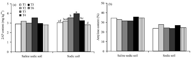 Image for - Soil Amendments Effect on Yield and Quality of Jasmine Rice Grown on Typic Natraqualfs, Northeast Thailand