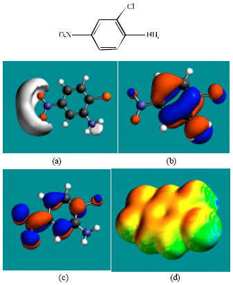 Image for - Molecular Modelling Analysis of the Metabolism of Niclosamide