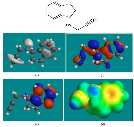 Image for - Molecular Modelling Analysis of the Metabolism of Rasagiline
