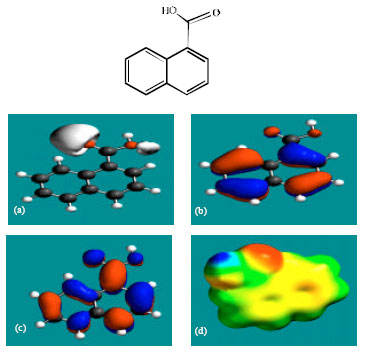 Image for - Molecular Modelling Analysis of the Metabolism of Terbinafine