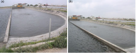 Image for - Gaza Wastewater Treatment Plant as a Model for Low Cost Wastewater Treatment Technology in Semi-Arid Environment