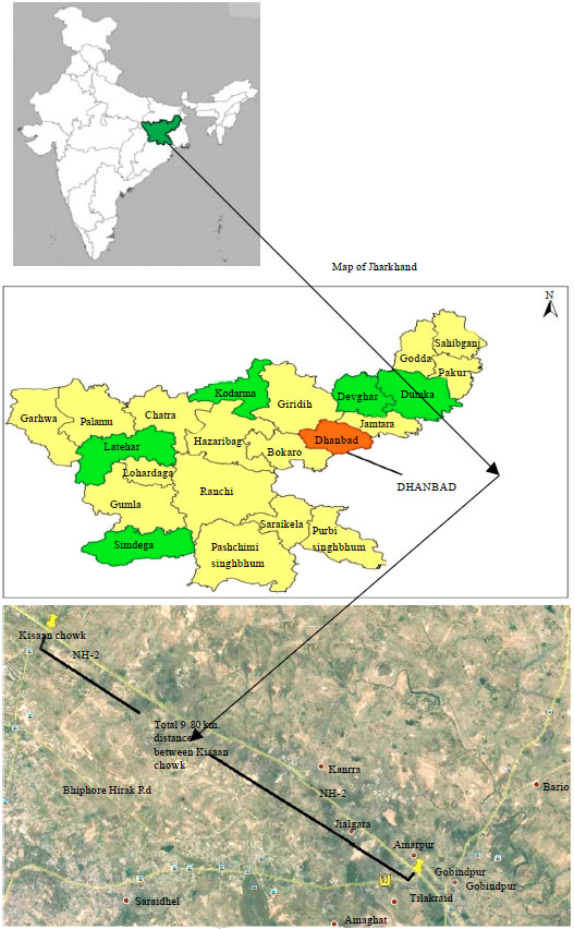 Image for - An Investigation in to the Impact of Particulate Matter on Vegetation along    the National Highway: A Review