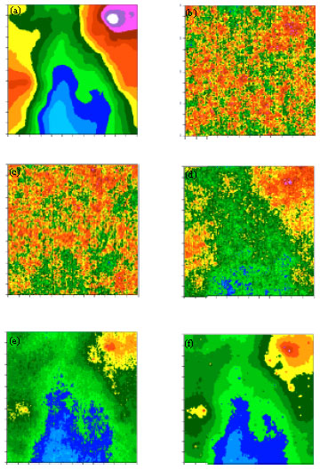 Image for - Evaluation of Stochastic Geographical Matters: Morphologic Geostatistics, Conditional Sequential Simulation and Geographical Weighted Regression