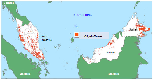 Image for - Economic Impact of Climate Change on the Malaysian Palm Oil Production