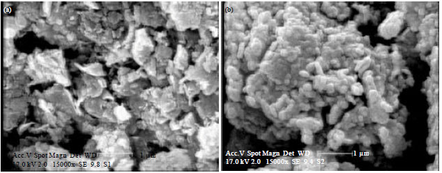 Image for - Adsorption Behavior of Reactive Blue 29 Dye on Modified Nanoclay