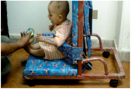 Image for - Influence of Enhanced Handling and Positioning on Motor Development in Full    Term Versus Preterm Infants