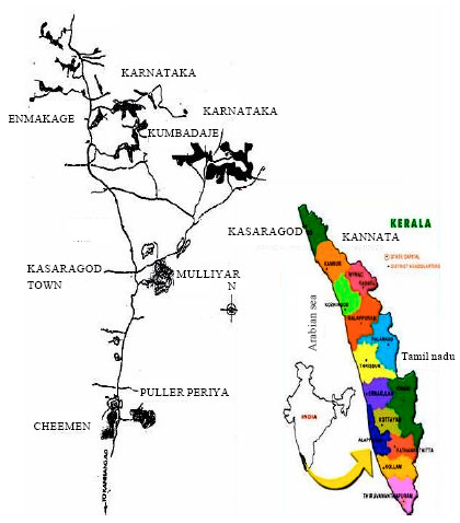 Image for - An Epidemiological Study on the Health Effects of Endosulfan Spraying on Cashew Plantations in Kasaragod District, Kerala, India