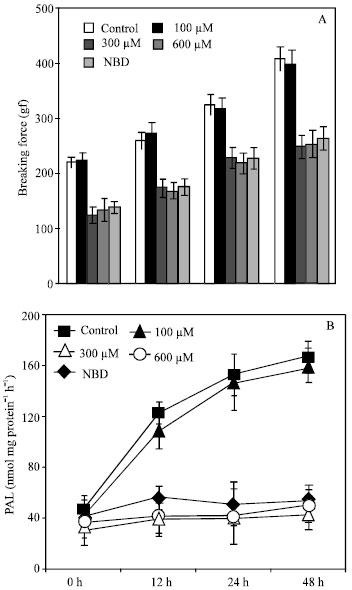 Image for - Phenylalanine Ammonia Lyase Inhibitors-2,5-Norbornadiene and α-Aminooxi-β-phenylpropionic Acid Reduce Toughening and Lignification of Stored Asparagus Spears