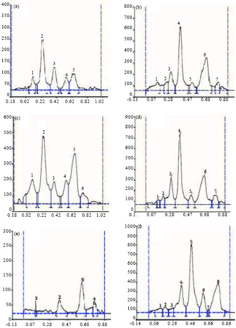 Image for - Production of Flavonoids in Callus Culture of Anthocephalus indicus A. Rich