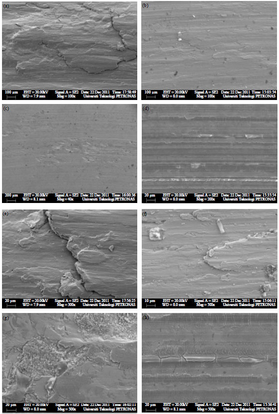 Image for - The Influence of Nitriding Time of AISI 316L Stainless Steel on Microstructure and Tribological Properties