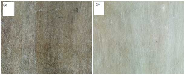 Image for - Investigating the Physical Properties of Treated and Untreated Jute Fibre-Polyester Composites
