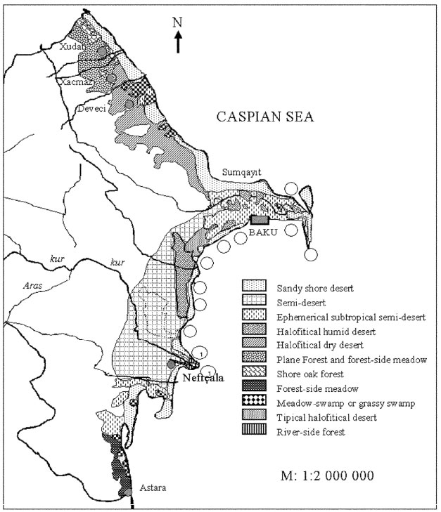 Image for - Phytosociological Characteristics the Vegetation of the Caspian's          Shores in Azerbaijan