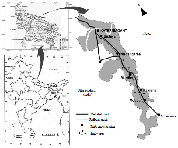 Image for - Phenological Study of Two Dominant Tree Species in Tropical Moist Deciduous Forest from the Northern India