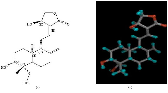 Image for - Andrographolide: A Review of its Anti-inflammatory Activity via Inhibition of NF-kappaB Activation from Computational Chemistry Aspects