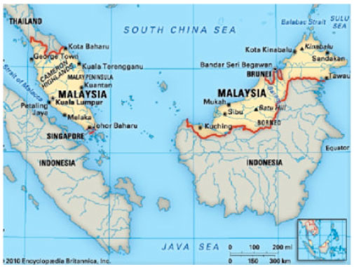Image for - Ethnopharmacological Survey of Medicinal Plants in Malaysia, the Kangkar Pulai Region