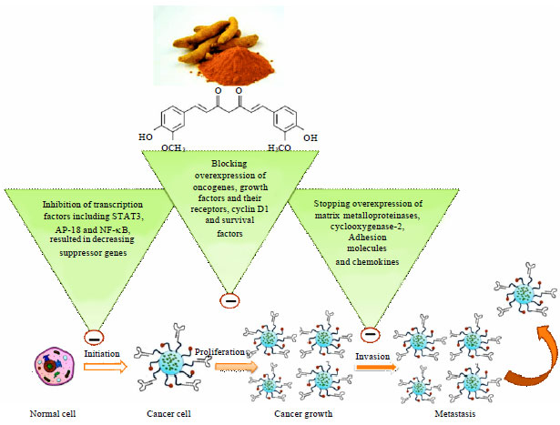 Image for - Perspective Studies on Novel Anticancer Drugs from Natural Origin:A Comprehensive Review