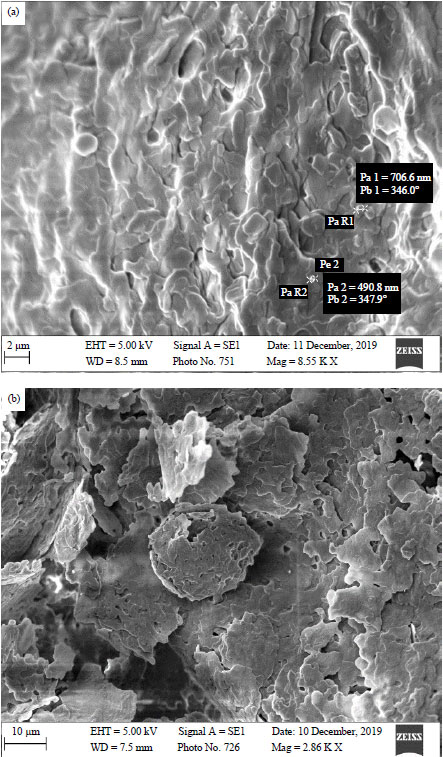 Image for - Development of Topical Antibacterial Gel Loaded with Cefadroxil Solid Lipid Nanoparticles: In vivo Wound Healing Activity and Epithelialization Study