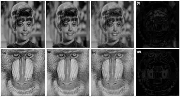 Image for - An Adaptive Visible Watermarking Algorithm for BTC Compressed Images