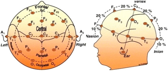 Image for - Blind Source Separation Techniques Based Eye Blinks Rejection in EEG Signals