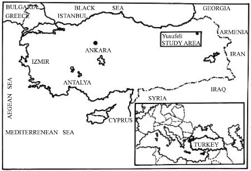 Image for - A Research on the Determination of the Tourism Potential of Natural and Cultural    Resources at Çoruh Watershed Area (Yusufeli Region): A Case Study