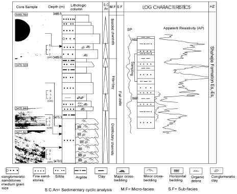 Image for - Depositional Systems of Nanpu Depression and its Petroleum Potential