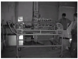 Image for - Breaking of Apricot Pits by Using a Mechanical System