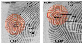 Image for - A Robust Correlation Based Fingerprint Matching Algorithm for Verification