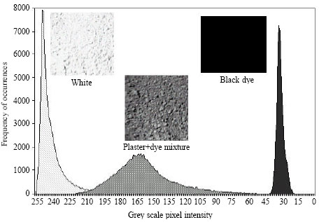 Image for - Monitoring of Dry Powder Mixing With Real-Time Image Processing