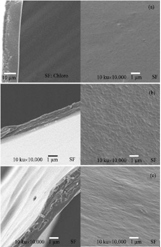 Image for - Silk Fibroin Film Loaded Chlorhexidine Diacetate: Interaction and Characteristics