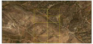 Image for - Investigation of Sampling Method Application with Fixed Plot in Sampling of Coppice Forests (Case Study: Oak Coppice Forests in Central Zagros)