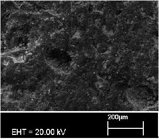 Image for - Investigation of Using Cedar Pine Cone Dust and Boric Acid in Brake Pads