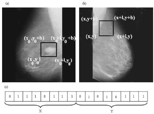 Image for - Neural Network and Genetic Algorithm Based Hybrid Model for Content Based Mammogram Image Retrieval